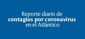 Reporte Diario Covid 19